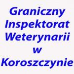 Graniczny_Inspektorat_Weterynarii_2
